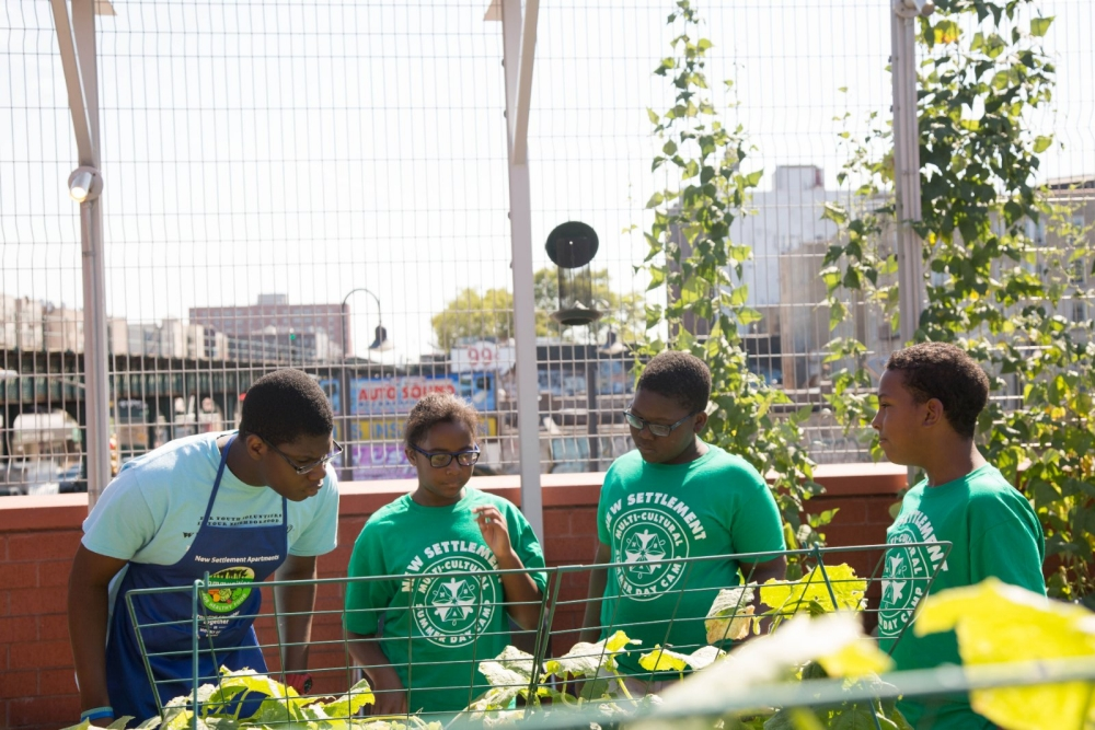 Students from the New Settlement Community Center summer camp look at their growing vegetables on the rooftop garden.