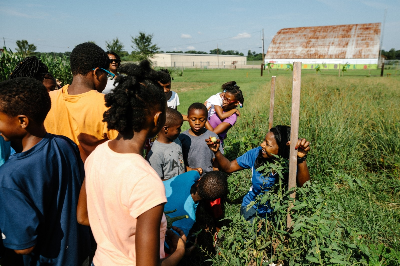 A group of children explore a community garden in a farmland setting.