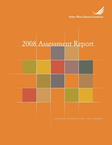 RWJF 2008 Assessment Report