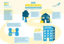 Infographic: Our Microbial Neighborhood