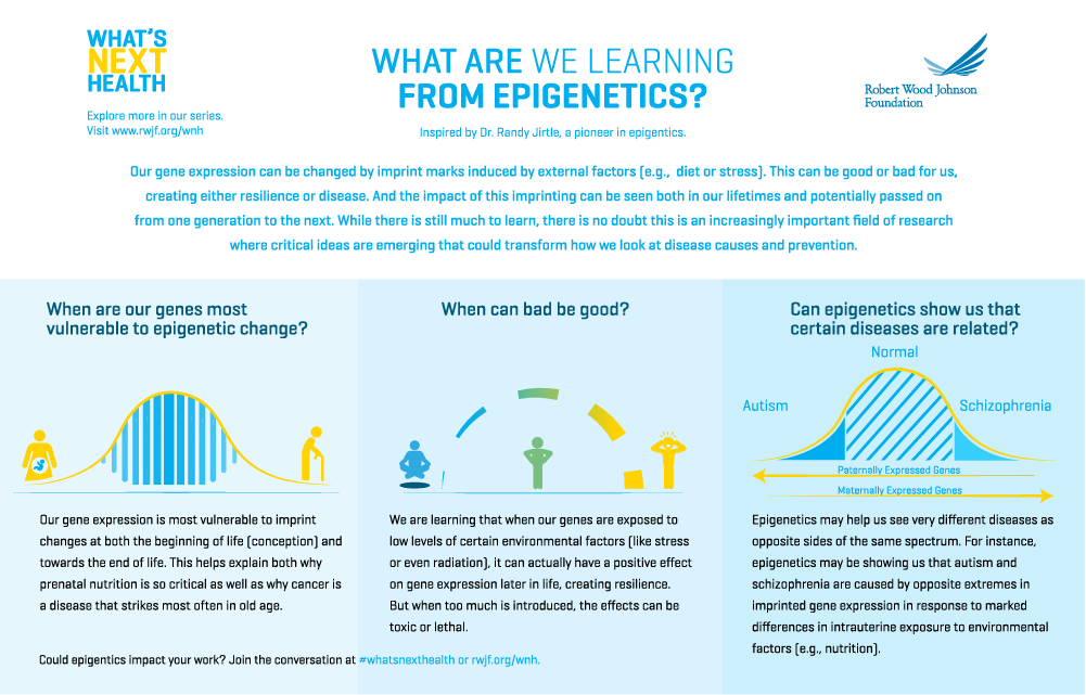 Infographic: What are we learning from Epigenetics?