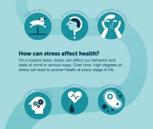Infographic: stress_section