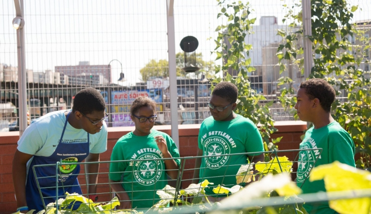 Students from summer camp look at their growing vegetables on the rooftop garden.