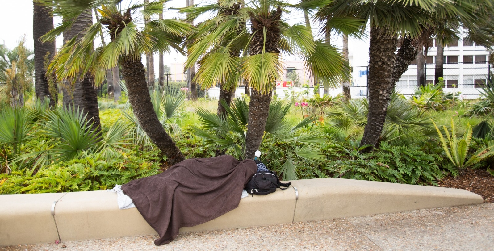 Homeless individual in California