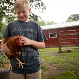 Student pets a chicken in front of the barn at elementary school.