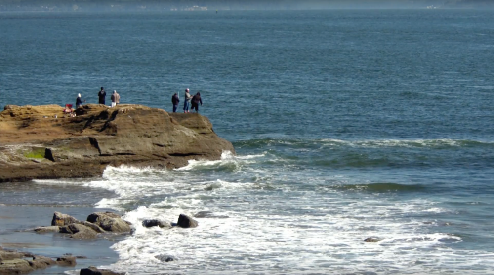 People on a cliff looking at the ocean.