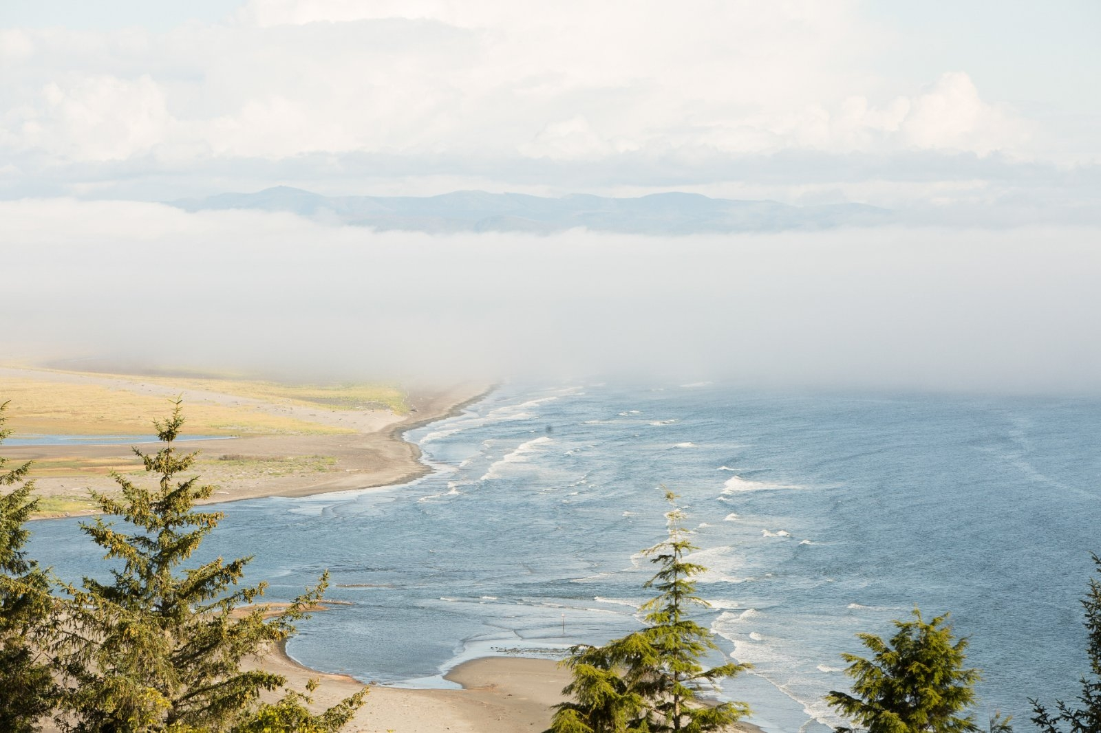 View of Shoalwater Bay, Washington.