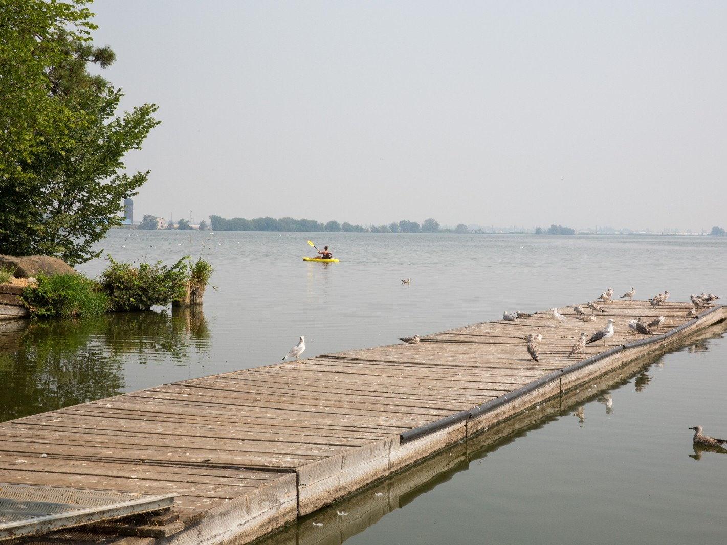 A boardwalk extends into a lake.