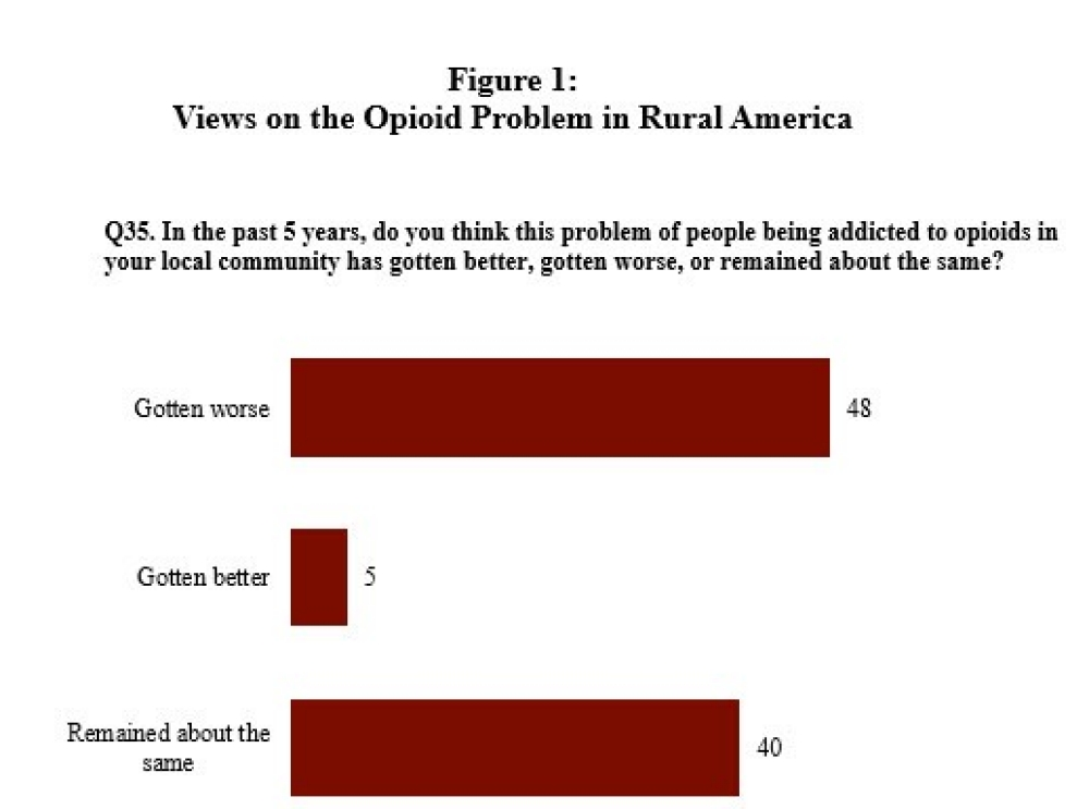 Views on the Opioid Problem in Rural America
